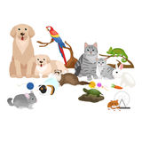 Home pets set, cat dog parrot goldfish hamster, domesticated animals Royalty Free Stock Photo