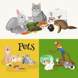 Home pets set, cat dog parrot goldfish hamster, domesticated animals Royalty Free Stock Photos