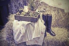 Home picnic Stock Photos