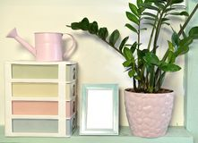 Home plant in cute pot, picture frame with empty blank, box and watering can stock image