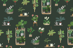Home plants pattern Stock Photo