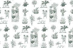 Home plants pattern Stock Image