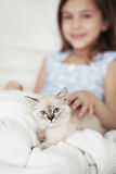 Child and kitten Royalty Free Stock Images