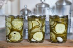 Free Home Preserved Dill Pickle Slices Royalty Free Stock Photography - 192115257