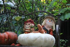 Home pumpkin patch Stock Images
