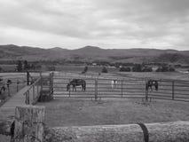 Home on Range Stock Photography