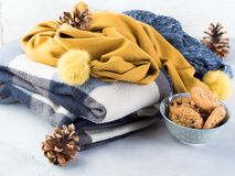 Home relax with plaid and cookies Royalty Free Stock Image