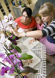 Home schooling - nature Royalty Free Stock Image
