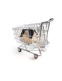 home shopping Arkivbild