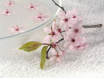 Home spa stock photography