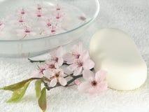 Home spa - een litte roze bloemen Royalty-vrije Stock Afbeeldingen