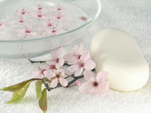 Home spa - a litte pink flowers Royalty Free Stock Images