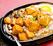Home style bean curd, chinese tofu cuisine Stock Photography