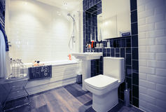 Home stylish wc room Royalty Free Stock Photography
