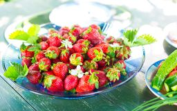 Home tasty strawberries from the garden to the Royalty Free Stock Photography