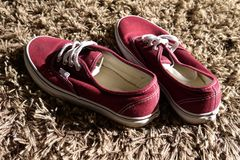 Home: teenage boy shoes on carpet. Red canvas boys' shoes on shag pile carpet Royalty Free Stock Photo
