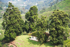 Home between trees in moutains landscape Royalty Free Stock Photos