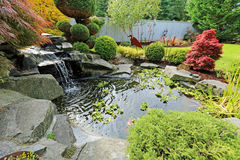Home tropical garden with pond Royalty Free Stock Image
