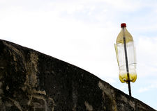 Home vane. A plastic bottle placed at the top of a wall. The wind made it turn around and around. Amazing stock photo