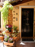 Home various flowers in pots. Design Italian courtyards. Around the house royalty free stock photos