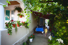 Home with vine alley. Countryside home with vine alley and terrace; child running away Stock Image