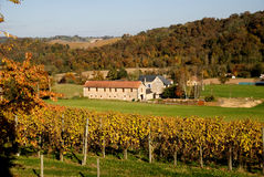 Home and vineyard in Aquitane France stock images