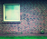 Home wall and windows with flower pots. stock photo