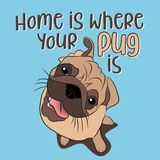 Home is where your pug is. Funny hand drawn vector saying with mops dog character. Adorable beige Pug puppies on a blue background royalty free illustration