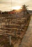 Home Wineyard. Beautiful Sunset Over Empty Winemaking Plantation Stock Photography