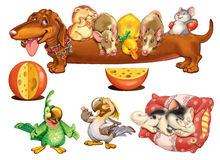 Home Zoo Cartoon Pets. Home Zoo. Characters design for invitations or greeting cards. Raster illustration Stock Photo