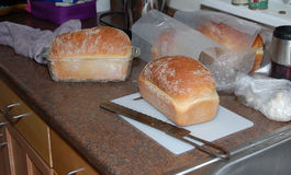 Homebaked bröd Royaltyfria Bilder