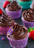 Homebaked double Chocolate muffins served with berries and edible flowers. Chocolate muffins served with dark chocolate ganache made for parties and festivals stock photo