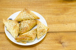 Homebaked triangle shaped meat pie on a plate royalty free stock photography