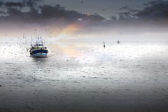 Homecoming. Tired fishing fleet getting back, France near the Atlantic ocean Stock Photo