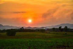 Homegrown λαχανικό και θέα βουνού με τον ουρανό ηλιοβασιλέματος στοκ εικόνες με δικαίωμα ελεύθερης χρήσης