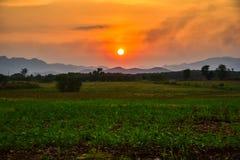 Homegrown λαχανικό και θέα βουνού με τον ουρανό ηλιοβασιλέματος στοκ εικόνες