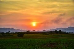 Homegrown λαχανικό και θέα βουνού με τον ουρανό ηλιοβασιλέματος στοκ φωτογραφίες