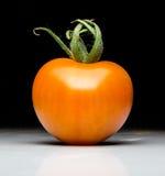 Homegrown κόκκινη φρέσκια ντομάτα στοκ εικόνες