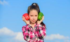 Παιδί που παρουσιάζει τα είδη πιπεριού Homegrown λαχανικά συγκομιδών πτώσης Επιλέξτε όποιων Εναλλακτική έννοια απόφασης Παιδί στοκ εικόνες