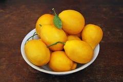 homegrown citroner för bunke royaltyfri fotografi