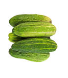 Homegrown cucumber Royalty Free Stock Photo