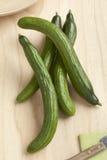 Homegrown fresh cucumbers Royalty Free Stock Photos