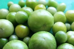 Homegrown Green Tomatoes Royalty Free Stock Photography