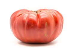 Homegrown heirloom tomato. Isolated on white royalty free stock photography