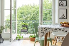 Homegrown herbs on a beautiful balcony outside a scandinavian dining room interior with a round table royalty free stock photos