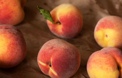 Homegrown juicy peaches from the garden. Organic Royalty Free Stock Photography