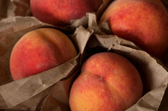 Homegrown juicy peaches from the garden. Organic Stock Image