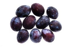 Homegrown organic pile of blue plums isolated on white backgroun Royalty Free Stock Photography