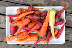 Homegrown Organic Purple and Orange Carrots Royalty Free Stock Photos