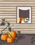 Homegrown Pumpkins. At a warm and inviting country home.  Inside pumpkin pie is being served!  The vector file is AI-EPS8 format Stock Photography